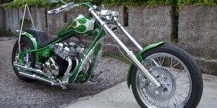 Customizzazione moto: El Ramarro
